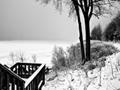 凍てつくシャンプレイン湖(アメリカ)