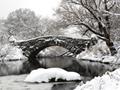 古い橋のある湖