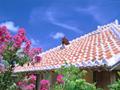 民家の屋根(沖縄)