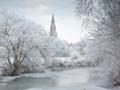 冬のスタンフォード