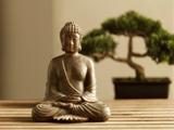 仏像と盆栽